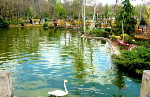 پارک شهید چمران