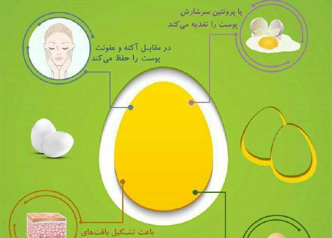 تخم مرغ با پوست چه می کند؟