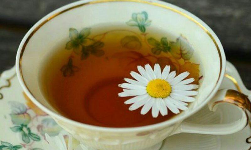 خواص انواع چای را بشناسید