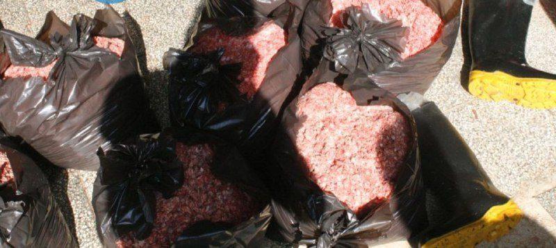 کشف ۲ هزار کیلو گوشت فاسد از یک واحد تولید همبرگر در نظرآباد