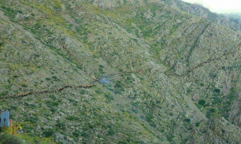 باربران انسانی در کوه ها برای ساخت سازه ها در ارتفاعات