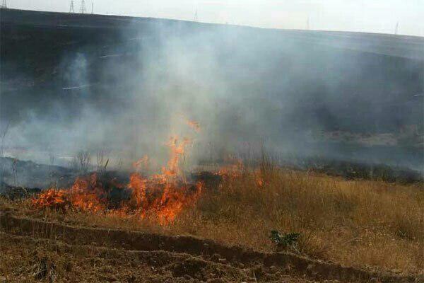 مهار آتش سوزی شدید جاده کرج به چالوس