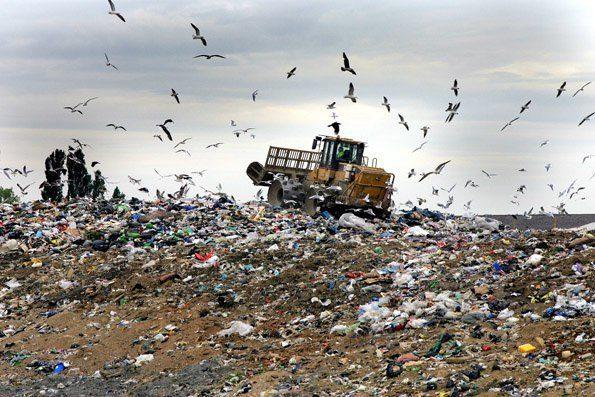 فقط ۷ درصد زبالههای کرج از مبدأ تفکیک میشود