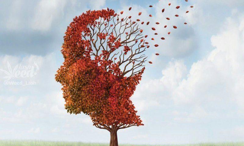 امروز روز جهانی آلزایمر است