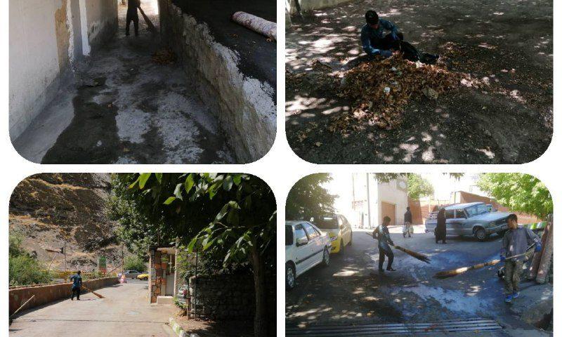 پاکسازی جهادی محله به محله توسط عوامل خدمات شهری