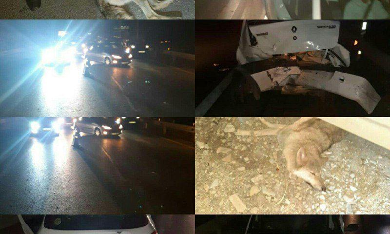 تصادف زنجیرهای در آزادراه پردیس تهران