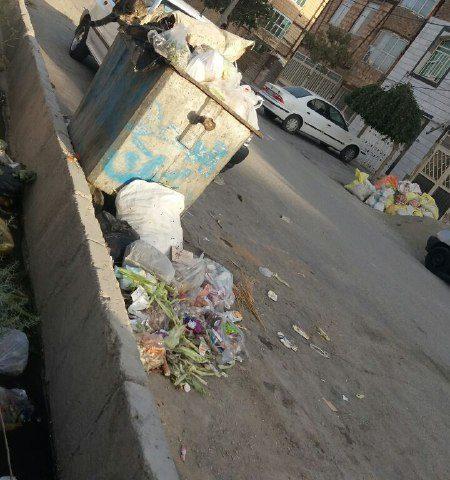 پیام شهروندی  کمبود سطل زباله در ماهدشت