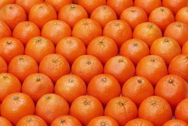 پرتقالهای نوبرانه یا رنگآمی سودجویانه؟