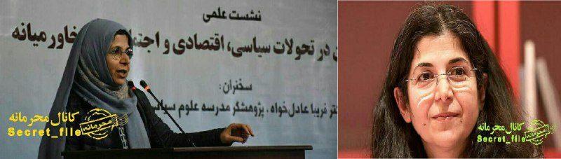 درخواست فرانسه از ایران برای آزادی شهروندش فریبا عادلخواه