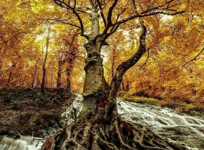آبشار سنگده مازندران  •